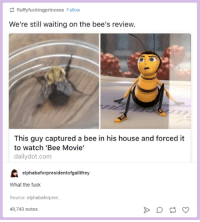 Bee Movie, Fuck, and House: fluffyfuckingprincess Follow  We're still waiting on the bee's review.  This guy captured a bee in his house and forced it  to watch 'Bee Movie'  dailydot.com  elphabaforpresidentofgallifrey  What the fuck  Source: elphabaforpres.  40,743 notes