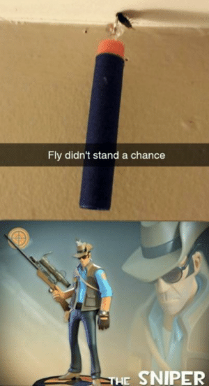 Me *spams F*: Fly didn't stand a chance  THE SNIPER Me *spams F*