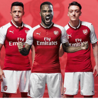 Arsenal, Memes, and Emirates: Fly  Em Emirates  Fly  Fly Arsenal make Lacazette their world record signing to bench Giroud . When Giroud benches Lacazette for France...