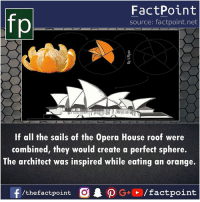 opera house: fo  FactPoint  source: factpoint.net  If all the sails of the Opera House roof were  combined, they would creafe a perfect sphere.  The architect was inspired while eating an orange.