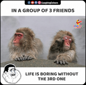 3 Friends: fo /LaughingColours  IN A GROUP OF 3 FRIENDS  LAUGHING  Colours  LIFE IS BORING WITHOUT  THE 3RD ONE
