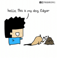 Dogs, Hello, and Memes: FO THESQUARECOMICS  hello, this is My dog, Edgar (artist: @thesquarecomics) another reason to be scared of dogs 😤😌