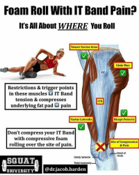 Head, Memes, and School: Foam Roll With IT Band Pain?  It's All About WHERE You Roll  Tensor fasciae latae  Glute Max  Restrictions & trigger points  in these muscles  t IT Band  tension & compresses  ITB  underlying fat pad G pain  Biceps Femoris  Vastus Lateralis  Don't compress your IT Band  with compressive foam  Site of Compression  rolling over the site of pain.  & Pain  Head of  fibula  Gerdy tubercle  SQUAT  Tibial tuberosity.  UNIVERSITY  @dr jacob harden @squat_university and I teamed up to discuss a topic that has been a little misunderstood by many - should you FOAM ROLL when dealing with IT band pain? Find out now 👇🏼 . If you guys remember my recent series on ITBS, you know that IT band pain is caused by compression of the band against a highly innervated (lots of nerves) piece of fat that covers the lateral femur. And I said that foam rolling DIRECTLY OVER the site of pain only brings out MORE compression & leads to ⬆️ pain ❌. . But one question came up a lot...Should we foam roll at all?!? 🤔 . When we were going through school, we had an anatomy lab where we dissected cadavers and physically cut into the IT Band. Let me tell you, it is an extremely thick piece of tissue. For this reason, deep tissue work like foam rolling isn't likely to make a ton of a change in tension. However, the IT Band also has fascial connections to many other muscles of the lower leg (which are like a spider web of connective tissue that encapsulates and connect all of the muscles of your body). When foam rolling your lateral leg, you're not only hitting your IT Band. You're also rolling over tissues that connect to the IT Band such as the Vastus Lateralis (lateral quad), Biceps Femoris (lateral hamstrings), Glutes and TFL. . Restrictions in these muscles can contribute to excessive tension on the IT Band. Trigger points in these muscles can even refer pain to the lateral part of the knee, mimicking the exact symptoms of IT Band Syndrome. For this reason, foam rolling the lateral thigh to address restrictions in these connections can be extremely beneficial at decreasing lateral knee pain - just stay on those muscles and don't roll over the exact site of pain! ✅ . For lasting results, it takes a comprehensive plan of deep tissue work to remove stiffness AND strength-coordination work to address WHY the problem started (This means addressing the hips)! 🏋🏽 . Check out the blog article that @squat_university (5 min read) linked in his bio today to learn how to fully treat this IT band pain! __________________________________ SquatUniversity MyodetoxOrlando Myodetox