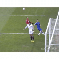 Amazing header from Chicharito vs Cech in his Man Utd days! 😱 - Follow us for more vids ✅: FOd  LLVDS Amazing header from Chicharito vs Cech in his Man Utd days! 😱 - Follow us for more vids ✅