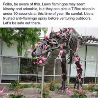 kitschy: Folks, be aware of this. Lawn flamingos may seem  kitschy and adorable, but they can pick a T-Rex clean in  under 90 seconds at this time of year. Be careful. Use a  trusted anti-flamingo spray before venturing outdoors.  Let's be safe out there.