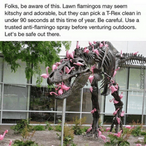 Flamingo Memes. Best Collection of Funny Flamingo Pictures: Folks, be aware of this. Lawn flamingos may seem  kitschy and adorable, but they can pick a T-Rex clean in  under 90 seconds at this time of year. Be careful. Use a  trusted anti-flamingo spray before venturing outdoors  Let's be safe out there Flamingo Memes. Best Collection of Funny Flamingo Pictures