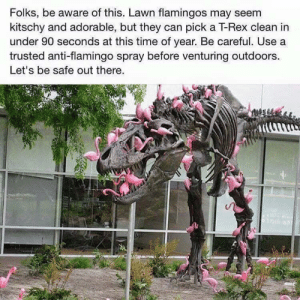 Thanks for the heads up, wholesome Grandma: Folks, be aware of this. Lawn flamingos may seem  kitschy and adorable, but they can pick a T-Rex clean in  under 90 seconds at this time of year. Be careful. Use a  trusted anti-flamingo spray before venturing outdoors  Let's be safe out there. Thanks for the heads up, wholesome Grandma