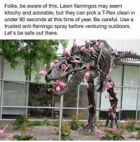 Memes, Adorable, and Anti: Folks, be aware of this. Lawn flamingos may seem  kitschy and adorable, but they can pick a TRex clean in  under 90 seconds at this time of year. Be careful. Use a  trusted anti-flamingo spray before venturing outdoors.  Let's be safe out there.