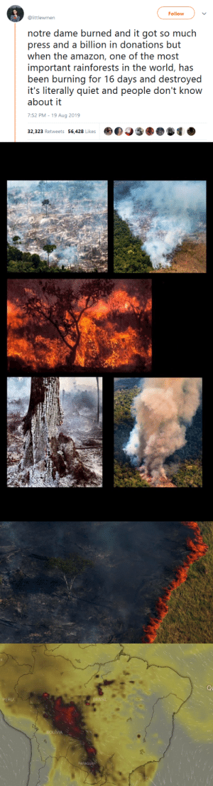 Amazon, Animals, and Tumblr: Follow  @littlewmen  notre dame burned and it got so much  press and a billion in donations but  when the amazon, one of the most  important rainforests in the world, has  been burning for 16 days and destroyed  it's literally quiet and people don't know  about it  7:52 PM - 19 Aug 2019  32,323 Retweets 56,428 Likes   Q  PERU  BRASIL  BOLIVIA  PARAGUAN gahdamnpunk: The Amazon jungle is the world's largest tropical rain forest and is home to the greatest variety of plants and animals on our PLANET