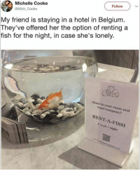 I don't even know wtf I'm looking at and am both laughing and pissed at the same time for laughing lol: Follow  Michelle Cooke  @Mich Cooke  My friend is staying in a hotel in Belgium  They've offered her the option of renting a  fish for the night, in case she's lonely.  Alone in your room and  want company?  RENT-A-FISH  3.50/ night I don't even know wtf I'm looking at and am both laughing and pissed at the same time for laughing lol