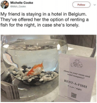 Being Alone, Belgium, and Funny: Follow  Michelle Cooke  @Mich Cooke  My friend is staying in a hotel in Belgium  They've offered her the option of renting a  fish for the night, in case she's lonely.  Alone in your room and  want company?  RENT-A-FISH  3.5o / night This is the type of shit we need more of. (@iamsloanesteel)