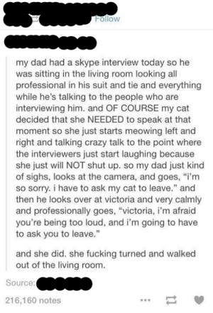 """The interviewomg-humor.tumblr.com: Follow  my dad had a skype interview today so he  was sitting in the living room looking all  professional in his suit and tie and everything  while he's talking to the people who are  interviewing him. and OF COURSE my cat  decided that she NEEDED to speak at that  moment so she just starts meowing left and  right and talking crazy talk to the point where  the interviewers just start laughing because  she just will NOT shut up. so my dad just kind  of sighs, looks at the camera, and goes, """"i'm  so sorry. i have to ask my cat to leave."""" and  then he looks over at victoria and very calmly  and professionally goes, """"victoria, i'm afraid  you're being too loud, and i'm going to have  to ask you to leave.""""  and she did. she fucking turned and walked  out of the living room.  Source:  216,160 notes The interviewomg-humor.tumblr.com"""
