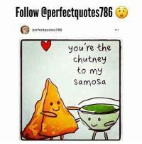 Disappointed, Love, and Memes: Follow Qperfectquotes786 et  perfectquotes786  you're the  chutney  to my  Samosa WOW SCROLL ACROSS! YOU HAVE TO FOLLOW THIS PAGE NOW 😍😍 👉🏼 @perfectquotes786 👉🏼 @perfectquotes786 👉🏼 @perfectquotes786 I LOVE this page, one of my favourites. The posts are AMAZING! 😵 ~ you'll find every type of quote and more all in one page. Follow now you won't be disappointed 🙌🏼 @perfectquotes786 Also look out for the captions. FOLLOW RIGHT NOW ➡️ @perfectquotes786 👉🏼 @perfectquotes786 👈🏼 👉🏼 @perfectquotes786 👈🏼 👉🏼 @perfectquotes786 👈🏼