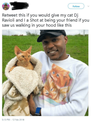 Best Friend, Saw, and Best: Follow  Retweet this if you would give my cat Dj  Ravioli and Ta Shot at being your friend if you  saw us walking in your hood like this  5:13 PM -12 Feb 2018 be my best friend