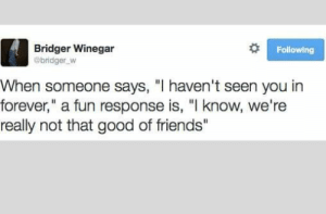 "29 Shitposts That'll Remind You Of The Internet's True Purpose: Following  Bridger Winegar  @bridger W  When someone says, ""I haven't seen you in  forever,"" a fun response is, ""I know, we're  really not that good of friends"" 29 Shitposts That'll Remind You Of The Internet's True Purpose"