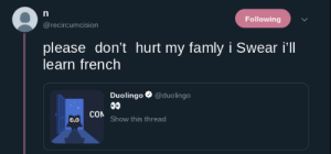 French, Irl, and Me IRL: Following  @recircumcision  please don't hurt my famly i Swear i'll  learn french  Duoling。. @duolingo  COM  0.0  Show this thread me irl