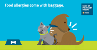 Did you know 30% of food-allergic dogs and cats are found to have another allergic skin condition? Learn more about the baggage that comes with pet food allergies in our #StateOfPetHealth report: https://bddy.me/2KRw31n: Food allergies come with baggage.  State of  Pet Healtlh  Report  anie Did you know 30% of food-allergic dogs and cats are found to have another allergic skin condition? Learn more about the baggage that comes with pet food allergies in our #StateOfPetHealth report: https://bddy.me/2KRw31n