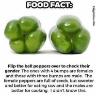 belle pepper: FOOD FACT:  Flip the bell peppers over to check their  gender. The ones with 4 bumps are females  and those with three bumps are male. The  female peppers are full of seeds, but sweeter  and better for eating raw and the males are  better for cooking. I didn't know this