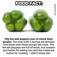 Hmm interesting...: FOOD FACT  Flip the bell peppers over tocheck their  gender. The ones with 4 bumps are females  and those with three bumps are male. The  female peppers are full of seeds, but sweeter  and better for eating raw and the males are  better for cooking. didn't know this. Hmm interesting...