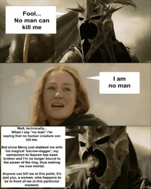 "no human *could* kill me by Morpegom MORE MEMES: Fool.  No man can  kill me  I am  no marn  Well, technically...  When I say ""no man"" I'm  saying that no human creature can  kill me.  But since Merry just stabbed me with  his magical 'barrow-dagger, my  connection to Sauron has been  broken and I'm no longer bound to  the power of the ring, thus making  me now mortal  Anyone can kill me at this point, it's  just you, a woman, who happens to  be in front of me at this particular  moment. no human *could* kill me by Morpegom MORE MEMES"