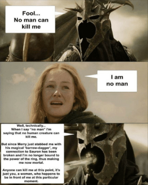 """Wraithsplaining by _AllMight MORE MEMES: Fool.  No man can  kill me  l am  no marn  Well, technically...  When I say """"no man"""" I'm  saying that no human creature can  kill me.  But since Merry just stabbed me with  his magical 'barrow-dagger', my  connection to Sauron has been  broken and I'm no longer bound to  the power of the ring, thus making  me now mortal.  Anyone can kill me at this point, it's  just you, a woman, who happens to  be in front of me at this particular  moment. Wraithsplaining by _AllMight MORE MEMES"""