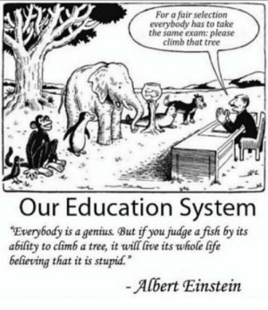 """Albert Einstein, Ass, and Life: For a fair selection  everybody has to take  the same exam: please  climb that tree  Our Education System  """"Everybody is a genius. But if you judge a fish by its  ability to climb a tree, it will five its whole life  believing that it is stupid.  -Albert Einstein Titles are a pain in the ass"""