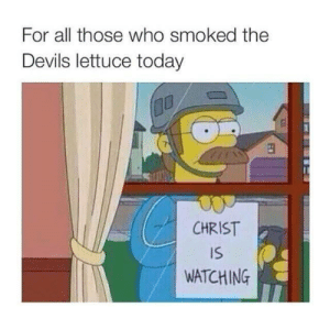 Today, Who, and Lettuce: For all those who smoked the  Devils lettuce today  CHRIST  IS  WATCHING  ED