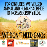 Memes, Antiquity, and 🤖: FOR CENTURIES, WE'VEUSED  ANIMALANDHUMANISACRIFICE  TO INCREASE CROP YIELDS  o o o  UESTIO  DON'T NEED GMOs  FOOD  March  CANONIST  Against  THEOCRACY  GMO  NOW!  GMO  WRONG SIDE  AFRAID  SOCIAT I mean if you are going to go the appeal to antiquity go all the way.