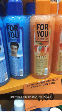 aloe vera: FOR FOR  YOU YOU  HAMP00  SHAMPOO  FOR MEN  OM  EN  85  A PROVI TAMINOM 85  hl  1000r  1000 ml  SAMPON FOR YOU ALOE  VERA 1L D&N SANI  are you a boy or an A PRICOT  /92)  8600102442450