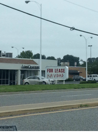 For, Lease, and Nä: FOR LEASE  NA VIDAD Someones ready for the holidays