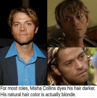 I'm looking for someone to rp with long term. Message if interested Supernatural: For most roles, Misha Collins dyes his hair darker.  His natural hair color is actually blonde. I'm looking for someone to rp with long term. Message if interested Supernatural