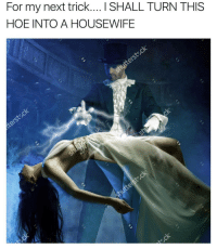 Hoe, Next, and For: For my next trick.... I SHALL TURN THIS  HOE INTO A HOUSEWIFE