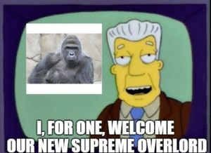 Image result for gorilla overlord