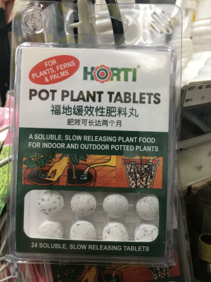 Food, Tablets, and Pot: FOR  PLANTS, FERNS  & PALMS  HORTI  POT PLANT TABLETS  福地缓效性肥料丸  HORTI HAQ NSE  3HO03  肥效可长达两个月  A SOLUBLE, SLOW RELEASING PLANT FOOD  FOR INDOOR AND OUTDOOR POTTED PLANTS  24 SOLUBLE, SLOW RELEASING TABLETS  FOK T Forbidden Mints