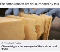 Drugs, Brain, and Girl Memes: For some reason I'm not surprised by this.  STANDARD.CO.UK  Cheese triggers the same part of the brain as hard  drugs My drug of choice? Mozzarella. ( @barrysbanterbus )