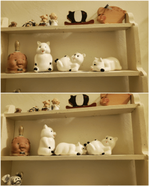 "For the last 17 years or so, I have been rearranging these pigs at my mom's house into a naughty pose every time I see them in their normal ""positions"". Every time she notices that I moved them, she puts them back. Neither of us have ever said a word to the other about it.: For the last 17 years or so, I have been rearranging these pigs at my mom's house into a naughty pose every time I see them in their normal ""positions"". Every time she notices that I moved them, she puts them back. Neither of us have ever said a word to the other about it."