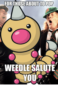 FOR THOSE ABOUT TO POP  WEEDLE SALUTE  YOU A Cheesy meme for you Pokemon GO Fans.