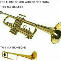 Dank, Dope, and Funny: FOR THOSE OF YOU WHO DO NOT KNOW  THIS IS A TRUMPET  THIS IS A TROMBONE AHH THE CRINGE clean memes cleanmemes funny funnymemes humour cleanhumour funnyhumour cleanbreadmemes bread yahhh ugh yay lol cool omg dope dank hashtag