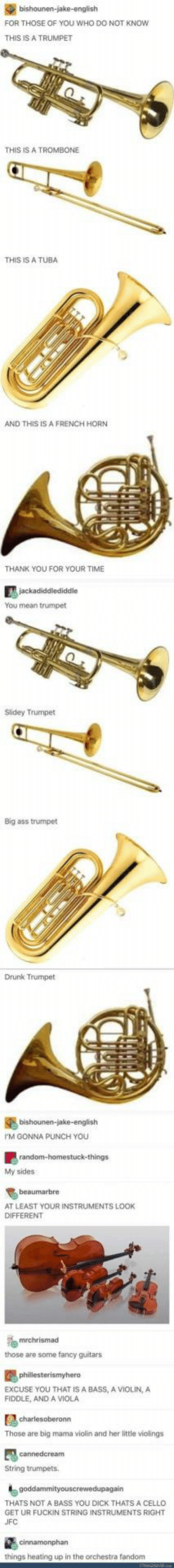 Instruments: FOR THOSE OF YOU WHO DO NOT KNOw  THIS IS A TRUMPET  THIS IS A TROMBONE  THIS IS A TUBA  AND THIS IS A FRENCH HORN  THANK YOU FOR YOUR TIME  You mean trumpet  Slidey Trumpet  Big ass trumpet  Drunk Trumpet  M GONNA PUNCH YOU  My sides  AT LEAST YOUR INSTRUMENTS LOOK  DIFFERENT  those are some fancy guitars  EXCUSE YOU THAT IS A BASS, A VIOLIN,A  FIDDLE, AND A VIOLA  Those are big mama violin and her little violings  String trumpets  THATS NOT A BASS YOU DICK THATS A CELLO  GET UR FUCKIN STRING INSTRUMENTS RIGHT  things heating up in the orchestra fandom Instruments