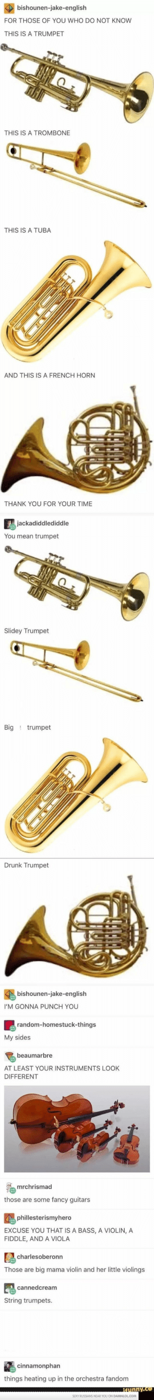 Drunk, Thank You, and Fancy: FOR THOSE OF YOU WHO DO NOT KNOW  THIS IS A TRUMPET  THIS IS A TROMBONE  THIS IS A TUBA  AND THIS IS A FRENCH HORN  THANK YOU FOR YOUR TIME  You mean trumpet  Slidey Trumpet  Big trumpet  Drunk Trumpet  I'M GONNA PUNCH YOU  My sides  AT LEAST YOUR INSTRUMENTS LOOK  DIFFERENT  those are some fancy guitars  EXCUSE YOU THAT IS A BASS, A VIOLIN, A  FIDDLE, AND A VIOLA  Those are big mama violin and her little violings  String trumpets.  things heating up in the orchestra fandom Lowkey Dead inside because of this #violinfunny #violinhumor