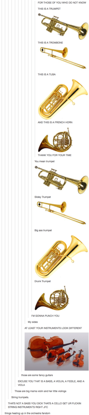 The Orchestral Fandom: FOR THOSE OF YOU WHO DO NOT KNOW  THIS IS A TRUMPET  THIS IS A TROMBONE  THIS IS A TUBA  AND THIS IS A FRENCH HORN  THANK YOU FOR YOUR TIME  You mean trumpet  Slidey Trumpet  Big ass trumpet  Drunk Trumpet  'M GONNA PUNCH YOU  My sides  AT LEAST YOUR INSTRUMENTS LOOK DIFFERENT  those are some fancy guitars  EXCUSE YOU THAT IS A BASS, A VIOLIN, A FIDDLE, AND A  VIOLA  Those are big mama violin and her little violings  String trumpets.  THATS NOT A BASS YOU DICK THATS A CELLO GET UR FUCKIN  STRING INSTRUMENTS RIGHT JFC  things heating up in the orchestra fandom The Orchestral Fandom