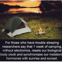 TheGoodQuote: For those who have trouble sleeping  researchers say that 1 week of camping,  without electronics, resets our biological  body clock and synchronizes our melatoni  hormones with sunrise and sunset. TheGoodQuote