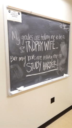 Wise words from a Purdue University student (i.redd.it): FOR  WHITESOA  MERS  est  ades are telng etobea Wise words from a Purdue University student (i.redd.it)