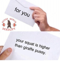 Gym, Pussy, and Giraffe: for you  BENC  DEADLIFT  your squat is higheir  than giraffe pussy. TAG someone who needs to receive this letter 👇👇👇👇 Via @squat.bench.deadlift