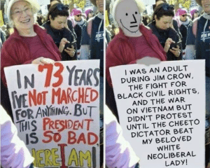 Protest, Black, and History: FORANİ ING, BUT  1556BADİ DICTA TO ROVED  EREİ AM  IWAS AN ADULT  DURING JIM CROw  THE FIGHT FOR  BLACK CIVIL RIGHTS,  AND THE WAR  ON VIETNAM BUT  DIDN'T PROTEST  UNTIL THE CHEETO  MY BELOVED  WHITE  NEOLIBERAL  LADY! Thought this belonged here because of the second panel. Kinda fucked up when you think about it
