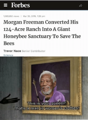 You like jazz?: = Forbes  Mar 20, 2019, 1:29 pm  1,083,850 views  Morgan Freeman Converted His  124-Acre Ranch Into A Giant  Honeybee Sanctuary To Save The  Bees  Trevor Nace Senior Contributor  Science  This is your queen?  That's a man in woments clothes! You like jazz?