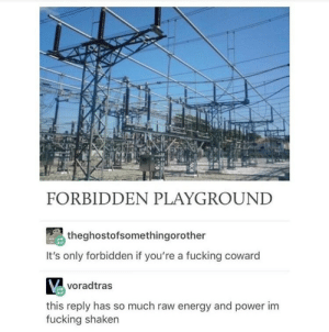 Forbidden playground: FORBIDDEN PLAYGROUND  theghostofsomethingorother  It's only forbidden if you're a fucking coward  voradtras  this reply has so much raw energy and power im  fucking shaken Forbidden playground