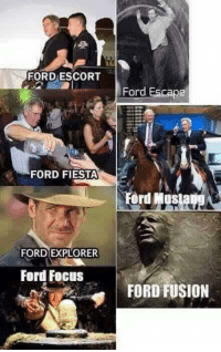 Memes, Focus, and Ford: FORD ESCORT  Ford Escape  -FORD FIESTA  Ford Mus  FORD EXPLORER  Ford Focus  FORD FUSION