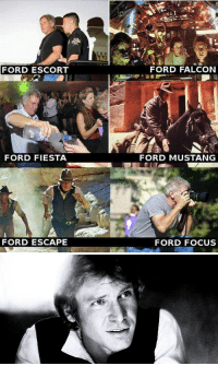 Focus, Ford, and Ford Escape: FORD ESCORT  FORD FALCON  FORD FIESTA  FORD MUSTANG  FORD ESCAPE  FORD FOCUS <h2>¿Cual es tu Ford Vorito?</h2>