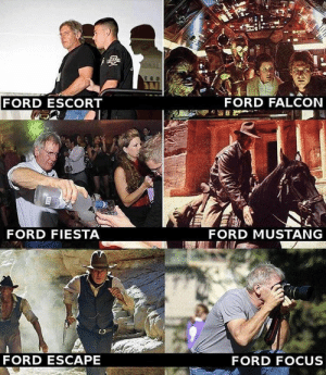 Focus, Ford, and Ford Escape: FORD ESCORT  FORD FALCON  FORD FIESTA  FORD MUSTANG  FORD ESCAPE  FORD FOCUS me_irl